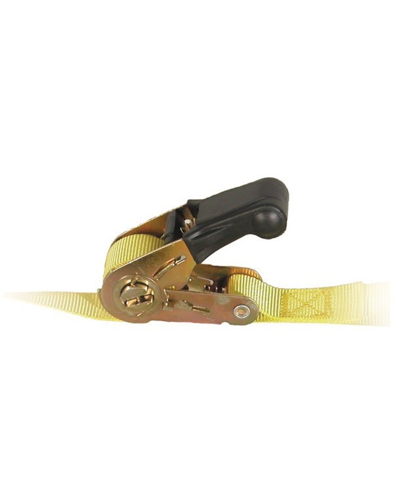 Ratchet Tie Down Strap 1'' X 12' Working Load Limit 600lbs.