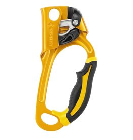 Petzl ASCENSION, Rope Grab, Right, Gold