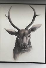 Coaster Wall Art - Deer Head w/ Frame (single)