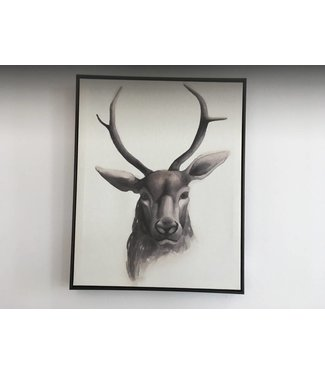 Coaster Wall Art - Deer Head w/ Frame (single)