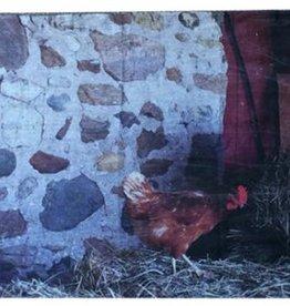 """Linen Farm """"Roost"""" Linen Scarf"""
