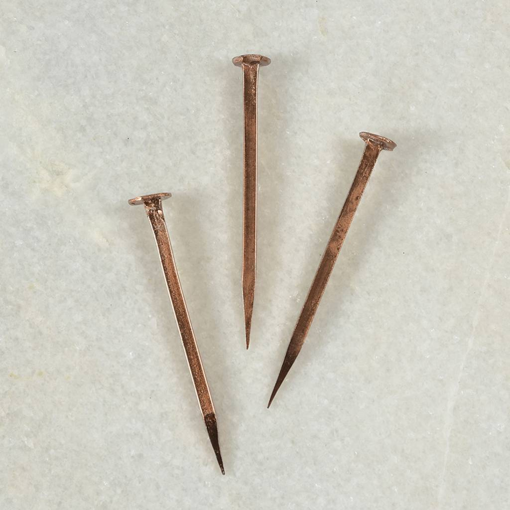 Forged Iron Nail - Large - Copper