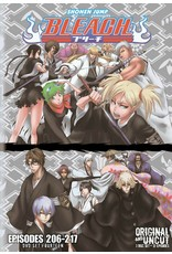 Viz Media Bleach Uncut Set 14 (Eps 206-217) DVD