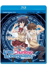 Sentai Filmworks Love, Chunibyo and Other Delusions Blu-Ray