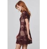 BB Dakota Aria Fig Lace Dress