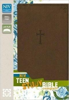 NIV Teen Study Bible, Imitation Leather, Brown
