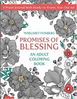Promises of Blessing (coloring book)