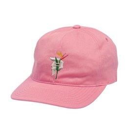 Primitive Dirty P Dad Hat Pink