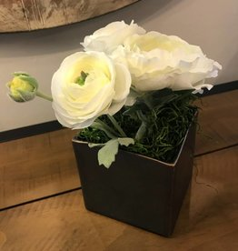 Ranunculus & Peony Stems in X-Small Square Container