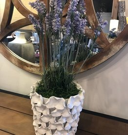 Lavender in Petal Accent Ceramic Pot