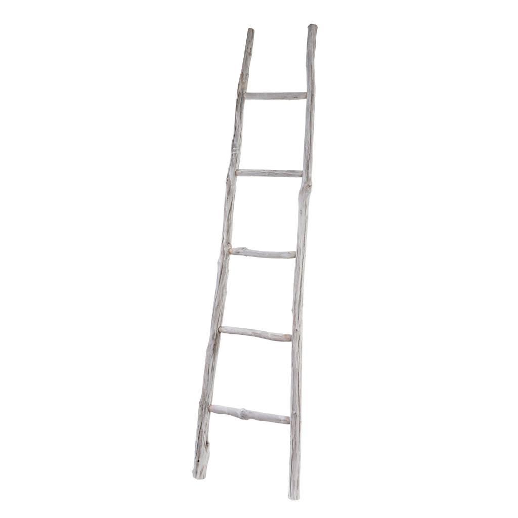 Branch Ladder White Large