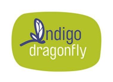 Indigodragonfly