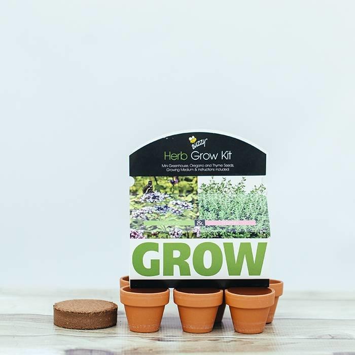 Herb Pot Mini Greenhouse
