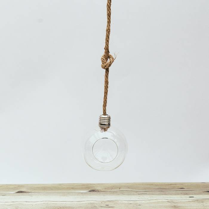 Vida Hanging Terrarium