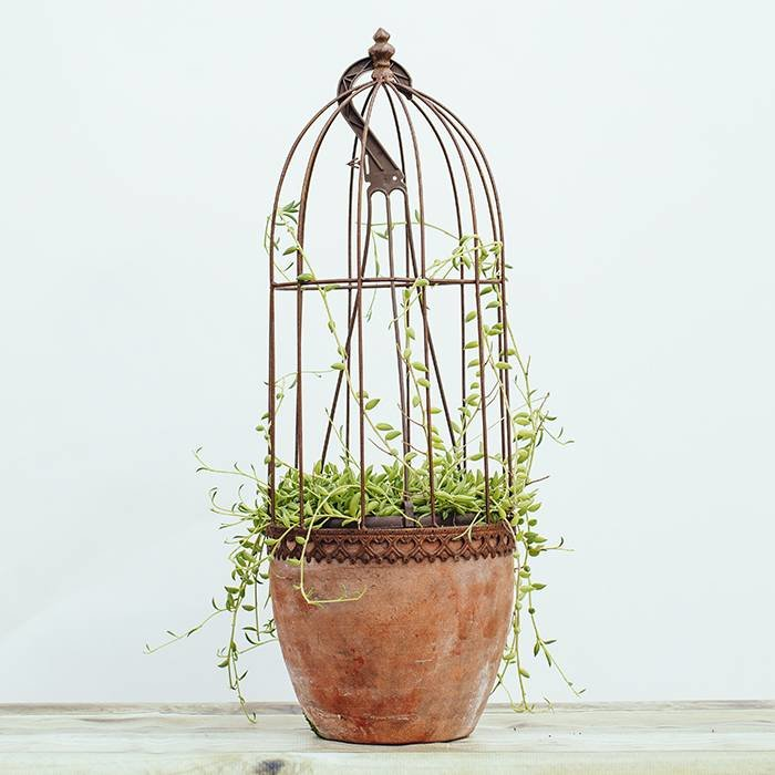 Rustic Metal Planter