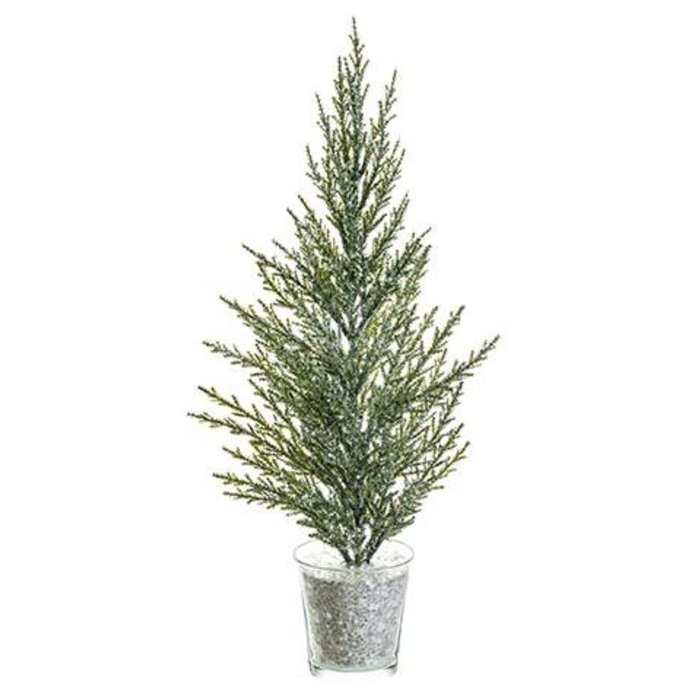 """Pine Tree in Glass Vase 15"""""""