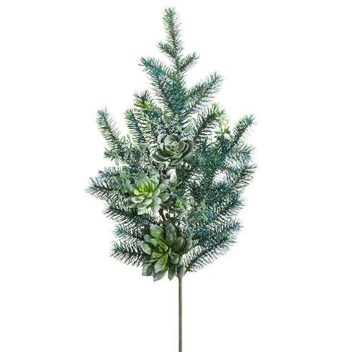 Snowed Pine Succulent Spray 28""