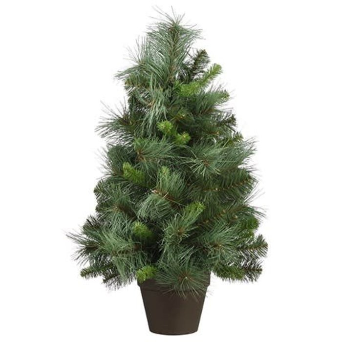 "Long Needle Pine Tree 26"""