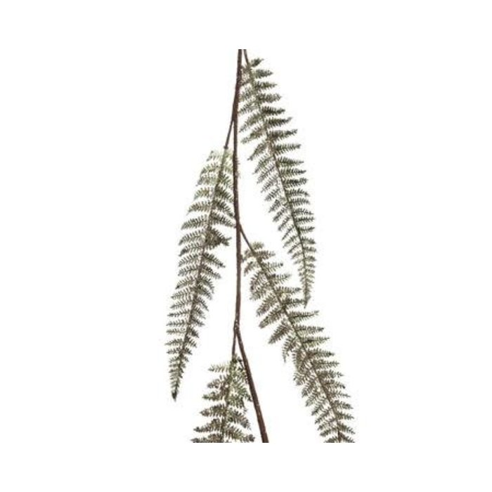 Fern Leaf Garland 47""