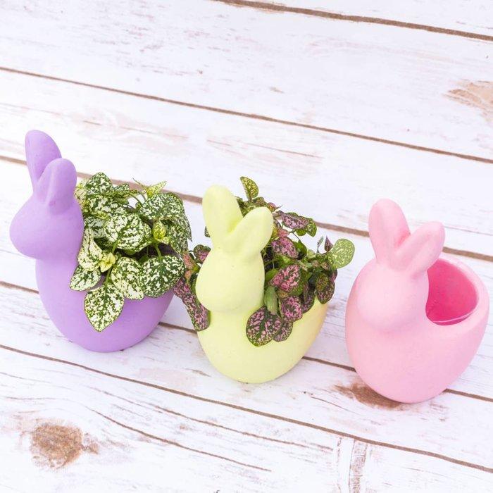 Bunny Hop - March 31 11:00a.m. - 2:00p.m.