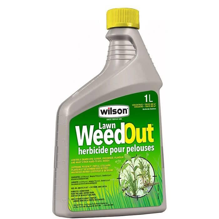 Lawn Weedout Concentrate 1L