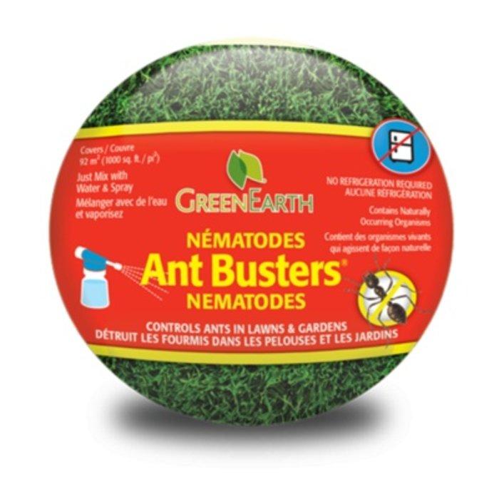 Ant Buster Nematodes
