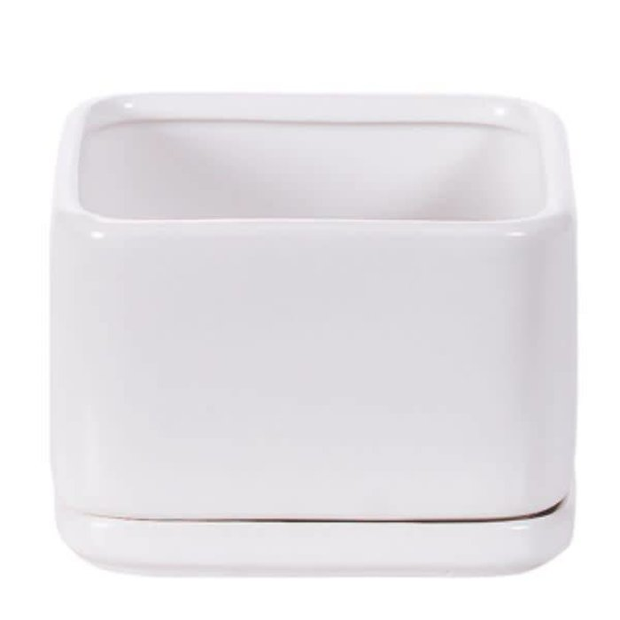 Square Matte White Pot with Saucer 3.75""