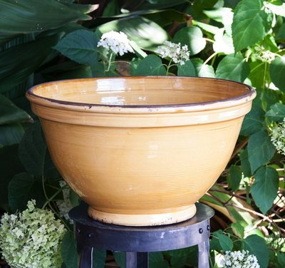 Italian Ceramics Lemon Deep Bowl with Rim