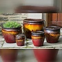 Glazed Mirador Planter Set of Five