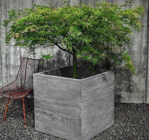 Cast Stone Chenes Brut Box Planter