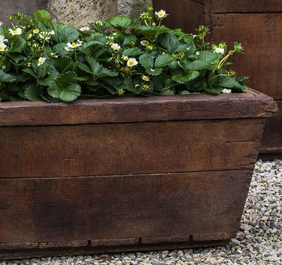Cast Stone Low Vendange Planter