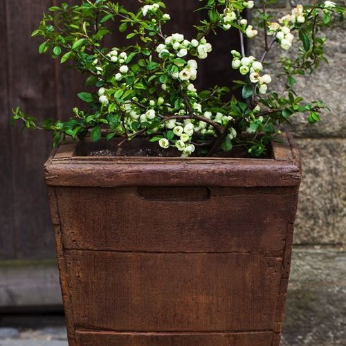 Cast Stone Tall Vendange Planter