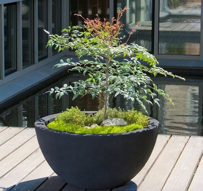 Fiberglass Piccadilly Planter