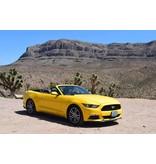 Mustang Yellow