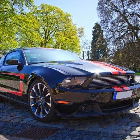 Mustang black
