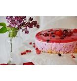 Cake fuite ut eget luctus
