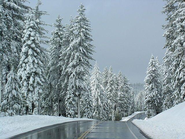 California's Skiers' Highway