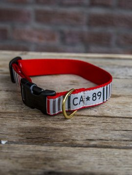 Dog Dog Collar