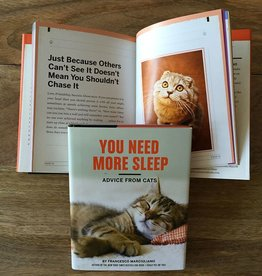Hachette You Need More Sleep, Advice from Cats