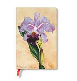 Hartley & Marks Brazilian Orchid Mini Lined Notebook