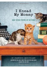 Hachette I Knead My Mommy