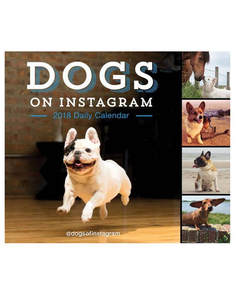 Hachette Dogs on Instagram 2018 Calendar