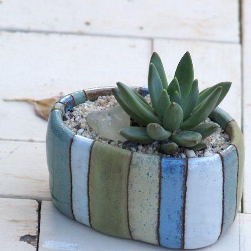 Studio HB2: Plants 'n Pots