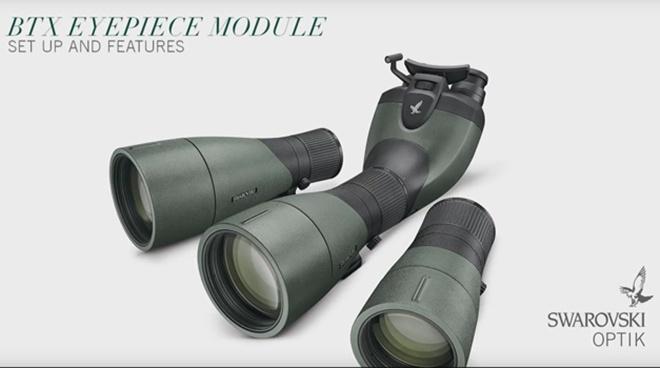 Swarovski Swarovski ATX/STX Module Eyepiece