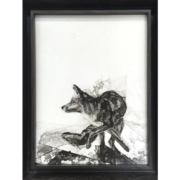 COYOTE  *Sold*