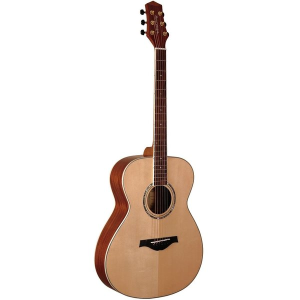 WoodSong Guitar Natural wood w/ pickup
