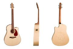 Acoustic-Electric