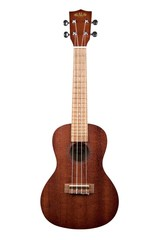 Check out our Ukulele