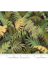 Moda Collections Sunshine, Palms in Black, Fabric Half-Yards