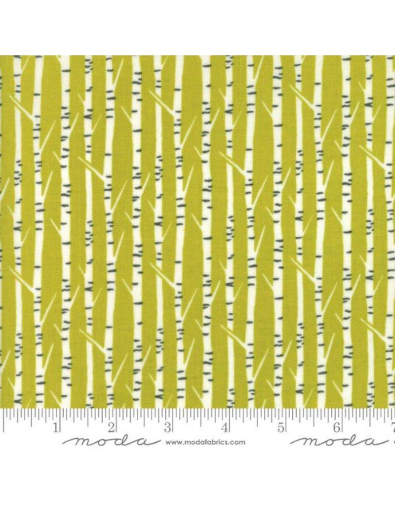 Moda Big Sky, Birch in Ochre, Fabric Half-Yards 16705 13